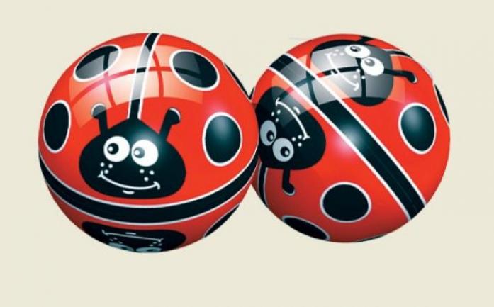 Мяч Dema-Stil Божья коровка на поле 23 см DS-PP 009
