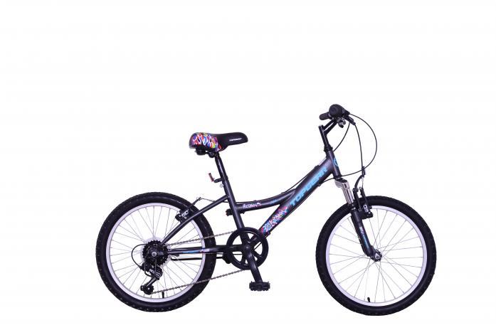 Велосипед двухколесный Top Gear 20 Mystic черный ВН20166